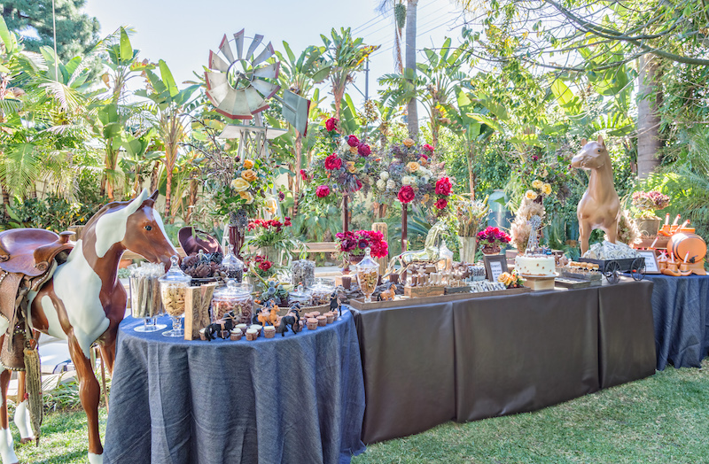 Greatest Rachel Zoe's Rodeo Party Candy bar - Candybar Couture DL83